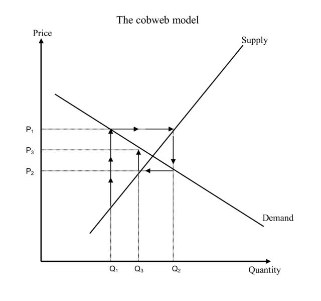 Cobweb_theory